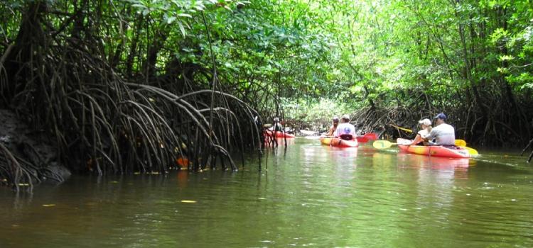 Tempat Menarik di Langkawi – Taman Geo Rimba Batu Kapur Kilim